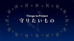 Episode 13 – Things to Protect