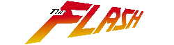 Flash-wordmark