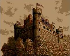 Firewood Castle