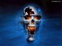 Scary-skull-wallpaper-skulls-8007343-1024-768