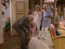 054 - The Golden Girls - Bringing Up Baby
