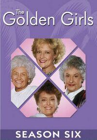 Golden-Girls Season 6 DVD