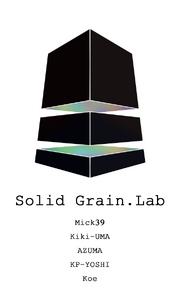 1372073026.solidgrain.lab solidgrain lab5