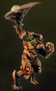Woodguard - Zikia Codex ogre
