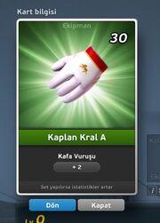 Kaplan Kral A Eldiven