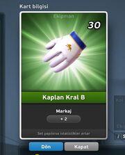 Kaplan Kral B Eldiven