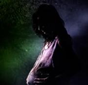 Diana pregnant