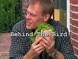Behind The Bird