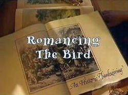 Romancing The Bird