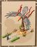Saga ofthe terror bird