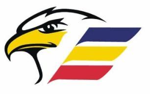 Large Eagles Logo1