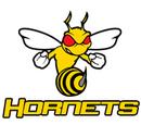 Medley Hornets
