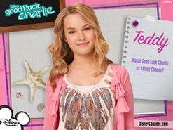 Teddy pink