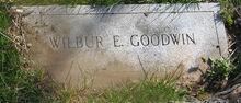 Wilbur E. Goodwin (1847-1905)