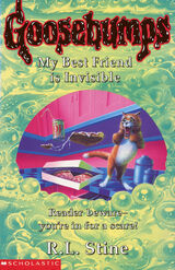 OS 57 My Best Friend is Invisible UK cover