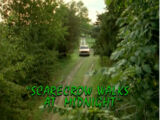 The Scarecrow Walks at Midnight/TV episode
