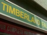 Timberland Falls