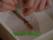 Go Eat Worms - Titlecard