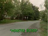 Monster Blood (book)/TV episode