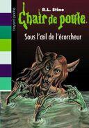 SOUS-L-OEIL-DE-L-ECORCHEUR-N64 ouvrage popin