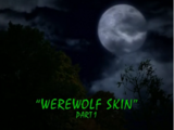 Werewolf Skin/TV episode