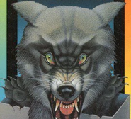 WolfSkinFrenchCover
