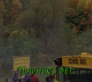 Teacher's Pet/TV episode