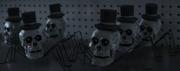 Skull Headed Spiders