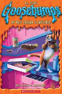 Mybestfriendisinvisible-dvd