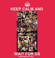 DS-dan-and-serena-21614683-500-526