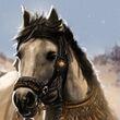 Ellaria Sand's Stallion