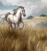 Dothraki Questgiver