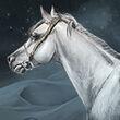 Daenerys Targaryen's Silver Horse