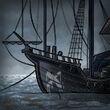 Common Pirate's Seal