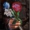 Daario's Flowers Thumbnail