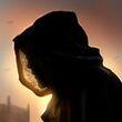 Barristan's Traveling Cloak