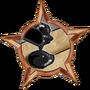 Badge-33-2