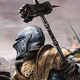 Baratheon Champion