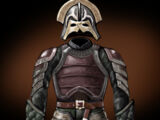 Guard's Uniform