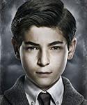 Gotham Bruce-Wayne-Portal 03