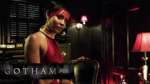 The Mythology of Gotham GOTHAM