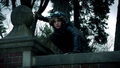 Selina crouched on the perch.png