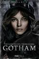 GothamSelinaKyle.png