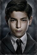 Bruce Wayne season 1 poster promotional