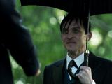 Penguin's Umbrella