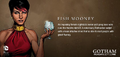 Fish Mooney Gary Frank promotional art.png
