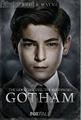 GothamBruceWayne.png