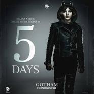 Gotham Selina 5 days