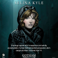 Selina Kyle Gary Frank promotional art.png