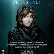 Selina Kyle Gary Frank promotional art